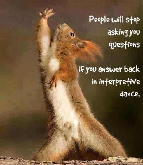 DanceSquirrel