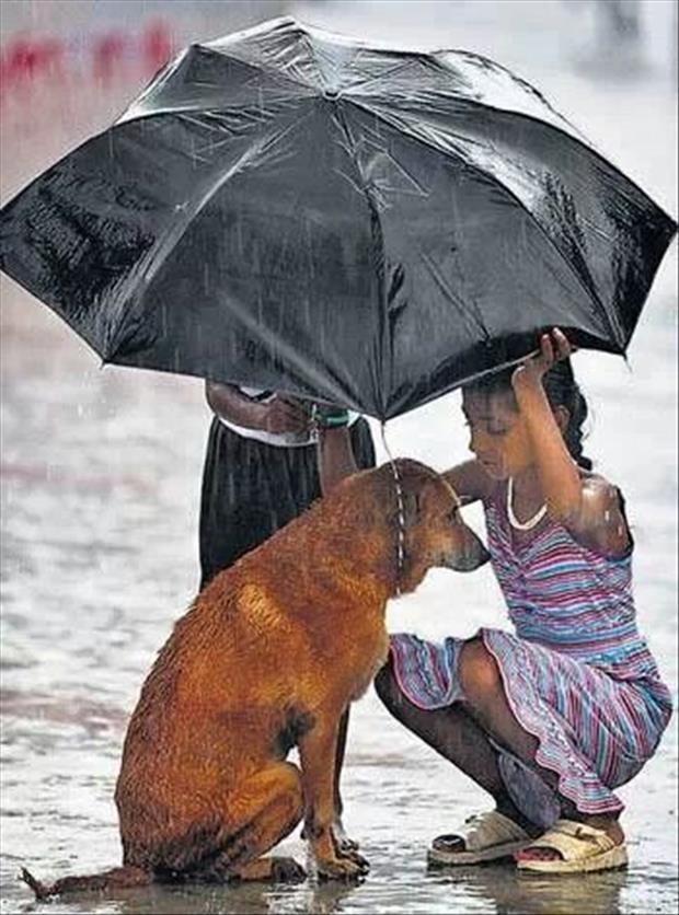 compassion7