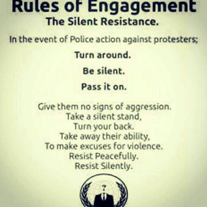 Rules of Engagement: The Silent Resistance